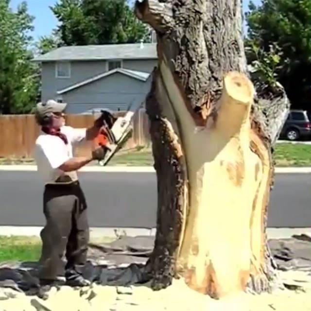 Dřevosochařství