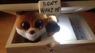 NEBUĎTE MĚ!!! Nerozsvěcejte, spím!
